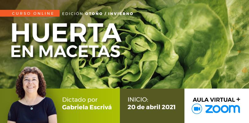 Huerta en Macetas Gabriela Escrivá